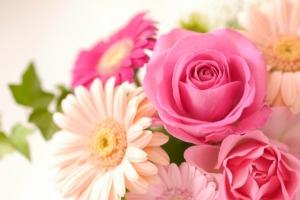 お花(フリー画像)