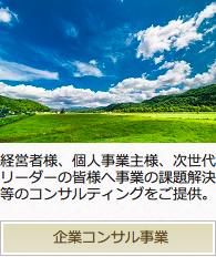 other_service02企業コンサル事業