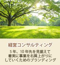 banner_m2_2経営コンサルティング